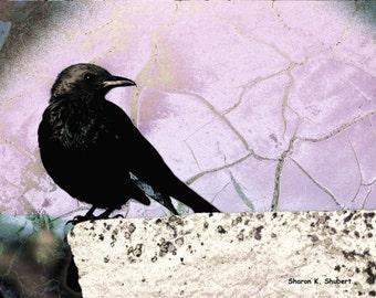 Crow Art, Purple Lilac Lavender, Garden Wildlife, Bird Totem Animal, Raven Blackbird Grackle, Wall Hanging, Home Decor, Giclee Print