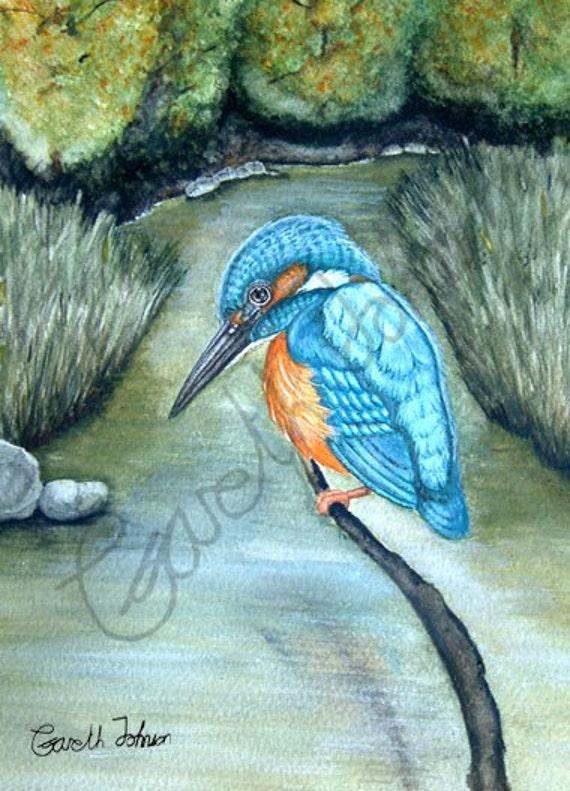 Kingfisher A4 digital print