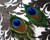 Peacock Earrings - SIMPLICITY - Feather Earrings Size Small