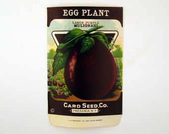 Vintage 1920s Unused Paper Seed Packet Egg Plant