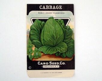 Vintage 1920s Unused Paper Seed Packet Cabbage