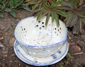 Fancy Berry Bowl/Colander