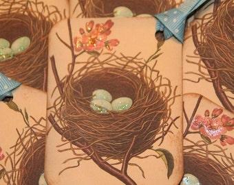 Blue Bird Eggs Nest Gift Tags