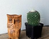 Vintage Wooden Carved Owl - Mr Wilson