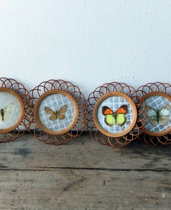 Vintage Butterfly Coasters - SALE