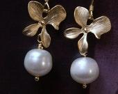 Gold flower white freshwater pearl earrings