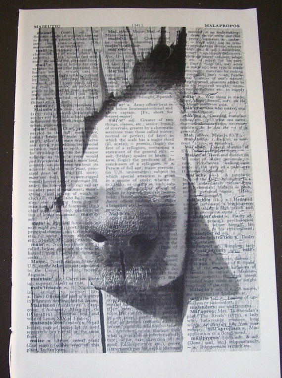 Nosey Neighbour Print on a Vintage Book Page Free Worldwide Shipping