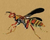 Paper Wasp - brown paper planet fine art print