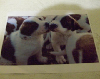 Puppy Love jigsaw puzzle