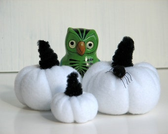 Halloween White Pumpkins with Spider  (Set N)