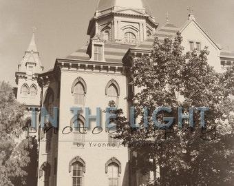 Notre Dame Golden Dome - Vintage Look - fine art photography