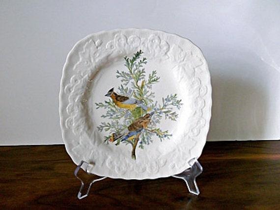 "Vintage Alfred Meakin ""Cedar Bird"" Plate, Audubon Birds of America"