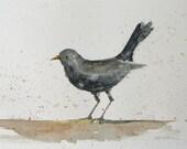 original watercolor painting of a Black Bird