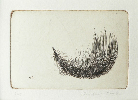original etching of a feather