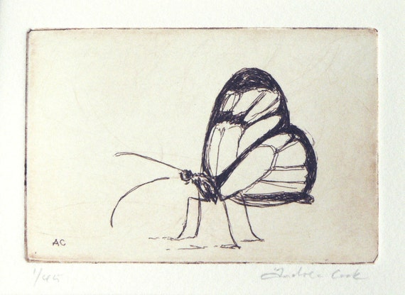 original etching of a butterfly