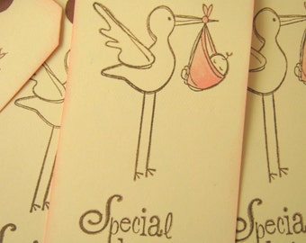 Baby Shower Stork Special Delivery Gift Tag