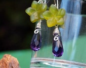 Jelly five petals peridot and amethyst briolette silver wire earrings