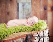 Pasture Green Artificial Fur Fabric, Newborn Photo Props - Photography Props, Faux FUR, Baby Blanket, Basket Stuffer, Fake Grass - 20  x 30