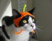 Simple Pumpkin Cat Hat