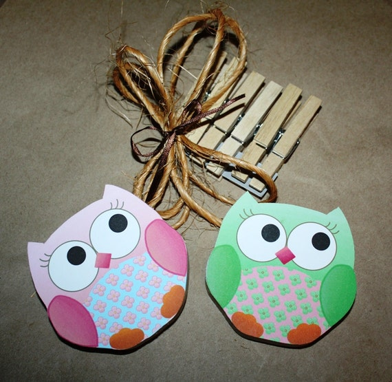 2 Girl Owls Wooden Girls Wall ART DISPLAY CLIPS for Kids Bedroom Baby Nursery Playroom Ac0002