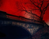 New York Photography Landscape Photography Vampires Crimson Red Decor Central Park NYC Gothic Art Spooky - Vampire's Rest