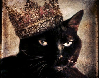 Black Cat Art Animal photography Cat wearing a Crown Custom Pet Portrait Gift for Cat Lovers Lonely Pixel Fine Art Print - Queen Cora II