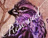 Reserved Listing 2nd Attempt Shipping
