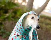 Dog Raincoat Slicker - Red Polka Dots on Turquoise