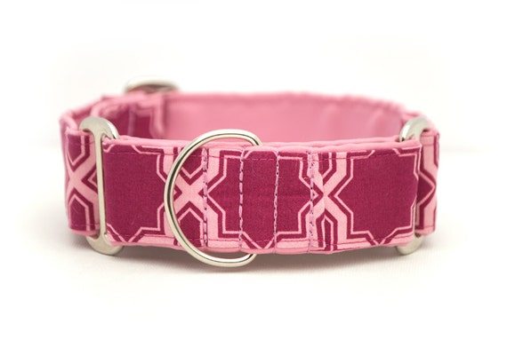 1.5 inch Martingale Collar - Modern Berry - Free Shipping