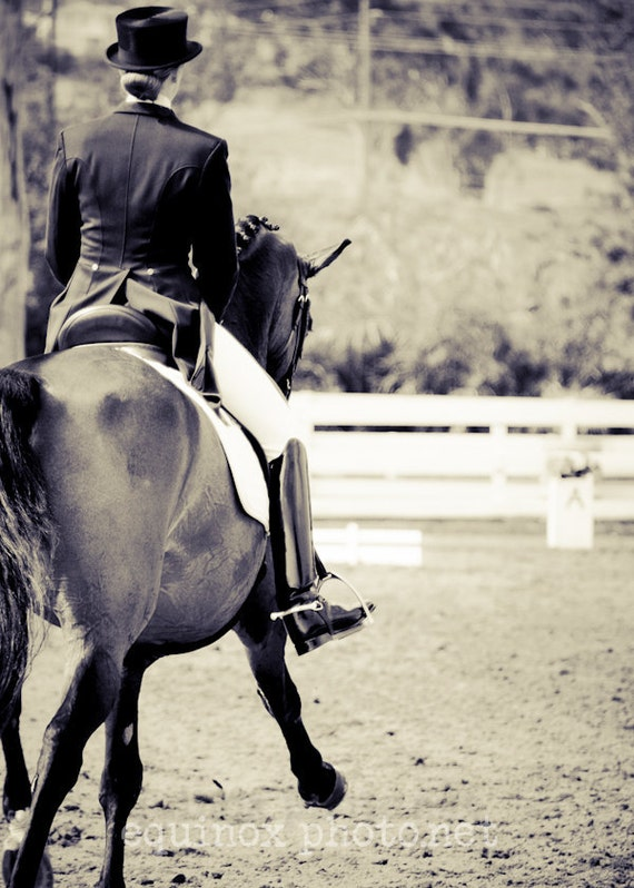 5x7  fine art metallic  horse photograph