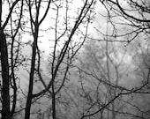 BW print - 'One morning, winter'
