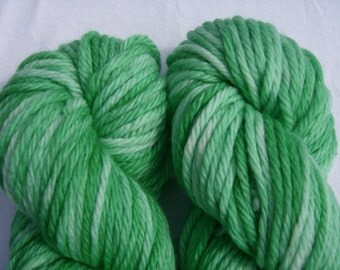 Wintergreen - Hand-dyed Superwash Merino Wool 94 yds. Bulky