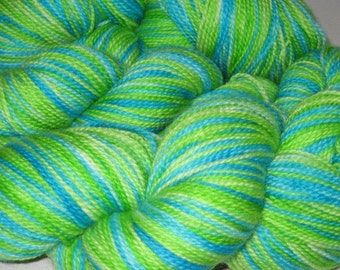 Earth Spinning- Hand-painted Superwash Merino Wool 160 yds. per skein