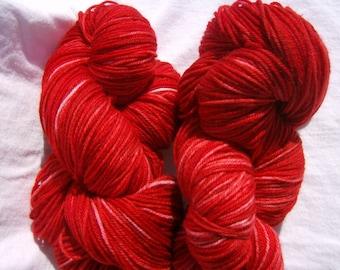 Strawberry Patch- 220 yd Hand-dyed Superwash Merino Wool