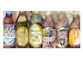 Beer Bottles - Yuengling - Sam Adams  - Hennepin  - Hebrew - Premium - (Art Print 10 x 20) from Original Watercolor