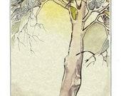 Original Watercolor Fine Art Painting - The Poet's Tree