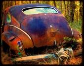 Mr. Newman's Last Gasp - Rusty Old Car - Nash - Fine Art Photograph by Kelly Warren