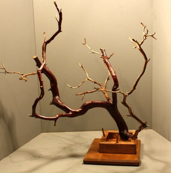 Large Manzanita Jewelry Tree with Recessed Base - 433