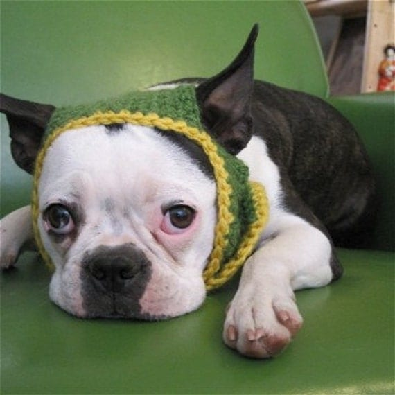 Dog Hat Mustard Greens