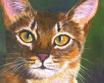 Cat Fine Art Print on Watercolor Paper Abyssinian