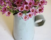 vintage megaphone flower pitcher, from the Netherlands, lovely grey green metal perfect patina