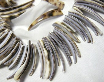 Shell Sliced Spears (40) with tortoise Shell Pattern