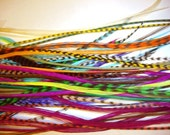 Bonded - 7 BRIGHT Hair Feathers Home kit - a random mix of salon style extensions  with 3 crimp beads in your color choices