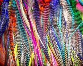 Feather Hair Extensions - 20 Hair Feathers -  a random mix of bright and grizzly feathers with 5 crimp beads in your color choices