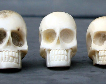 Small Hand Carved Skull Bead - Carved in Bali from Naturally Shed Deer Antler