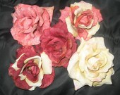 Amanda (Vintage Rose)