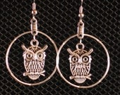 Hoot-Hoot The Owl Earrings