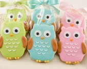 Owl Sugar Cookie Favors - 20 favors (gift bagged and bowed)