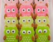 Owl Sugar Cookie Favors (2 dozen, bagged and bowed)