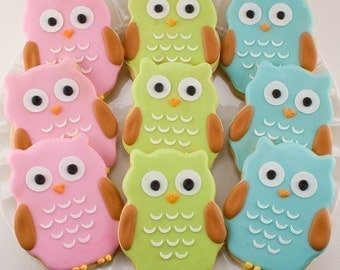 Owl Cookies - 12 Decorated Sugar Cookie Favors